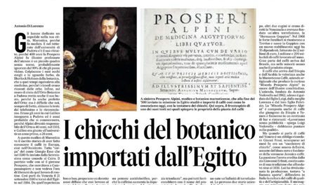 Prospero Alpini, il medico di Marostica che fece conoscere il caffè al mondo. Scoprì 400 anni fa che lo bevevano le donne egiziane per calmare i dolori mestruali